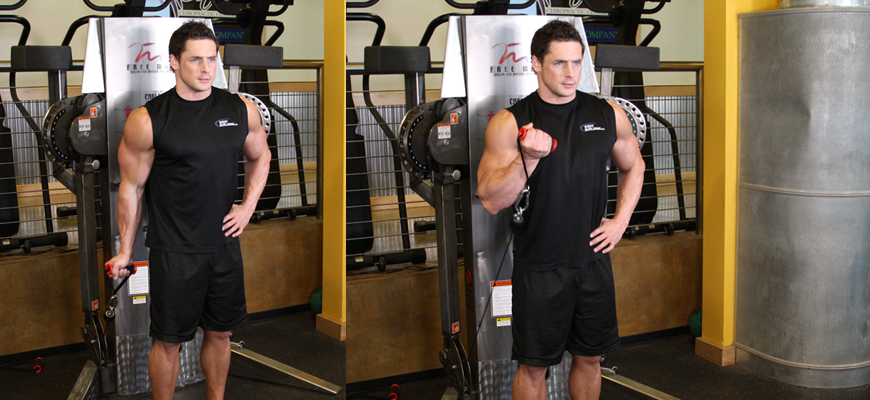 What are the Benefits of Wrist Curls? - One-Arm Cable Reverse Curls