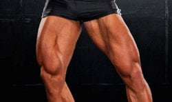 Safety Bar Squat vs Back Squat - Aesthetic Legs from Squats